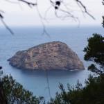Die Vogelinsel