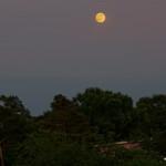 Mond über der Nordstadt