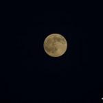 Mond bei 420mm