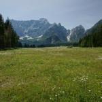Blumenwiese, Blick zum Mangart