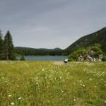 Oberer See und die Blumenwiese