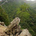 Trübe Aussichten in der Gorge