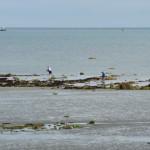 Fischen zu Fuß und per Boot