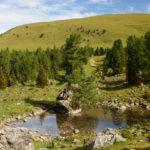 Der kleine See mit dem Baum auf dem Stein ist eine altbekannte Wegmarke