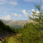 Das schönste im Tal: Die Strasse raus