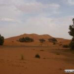 Unterkunft direkt an den Dünen